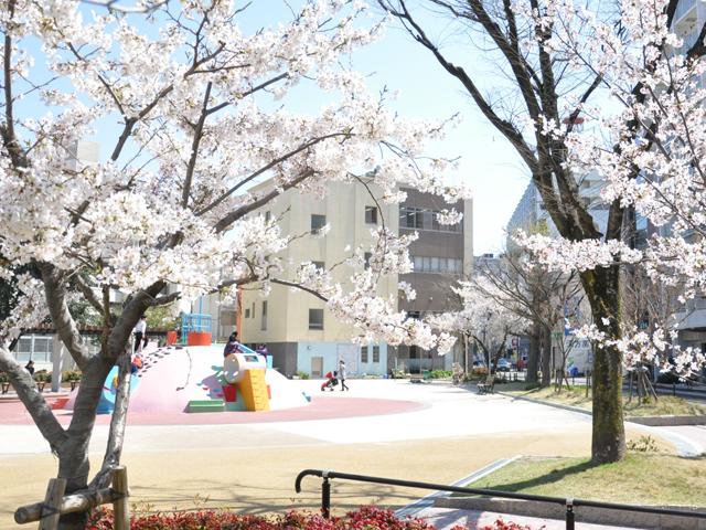 最寄の公園。周辺環境は小学校や公園があり、天神の住宅街となっております。