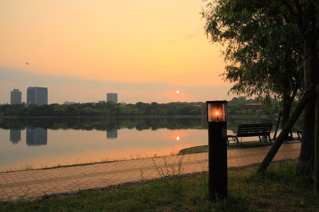 福岡のセントラルパーク。夏には6000~7000発の花火が見られる名スポット。夕暮れの景色も綺麗。
